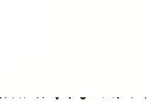 logo_white_noshaddow