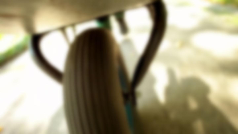 blur_bg